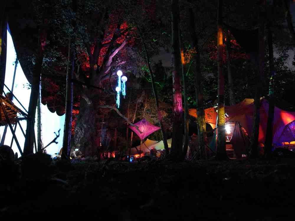 Woodland Wonder at Trystonbury Festival 2012